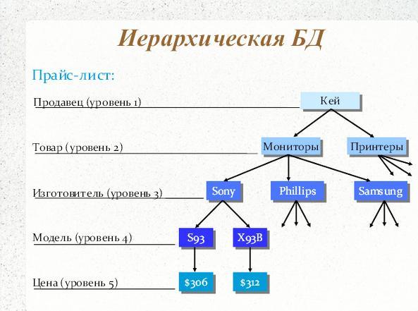 сетевой модели базы данных
